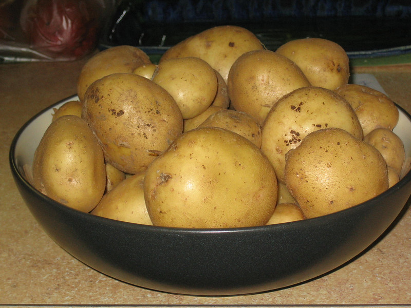 Potato crop from my garden.