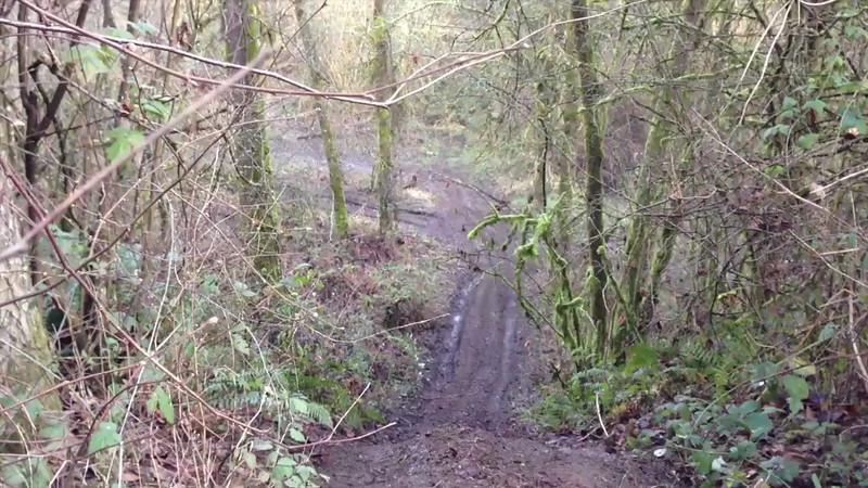 Toms Hills Climb
