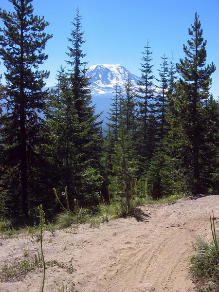 adams on the 110 trail