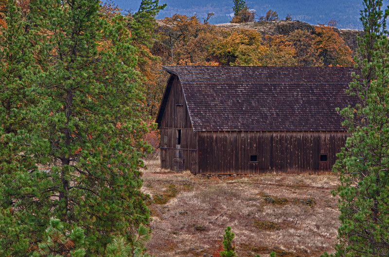 IMG_6736_HDR- T