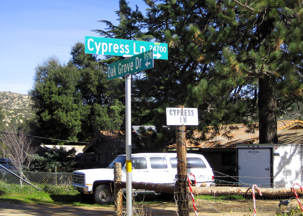 Week 04: Our street finally gets an official street sign. We're movin' on up. Now, if we could get super high speed internet.