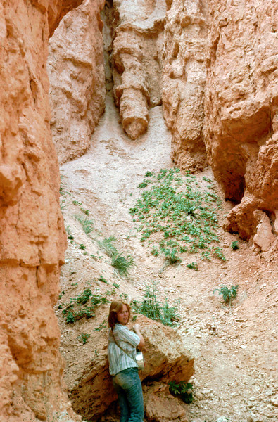 Week 20: This wasn't actually taken in Week 20 of 2011, but in July of 1976. I took this photo of my Bebe sister Lisa in Bryce Canyon, with a slightly phallic looking rock formation over her head. I just found these slides when cleaning out the garage, so it was fitting for Week 20.