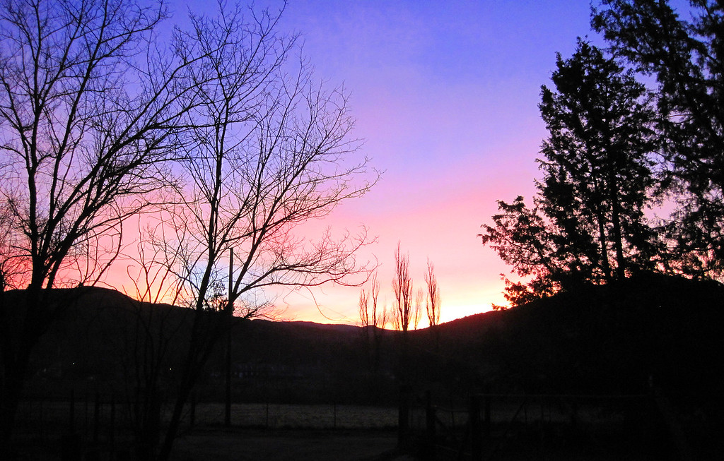 Week 05: Sunrise in Descanso, 6:15 am