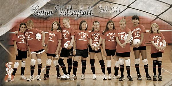 Tomlinson Fall VB Fun Team 1