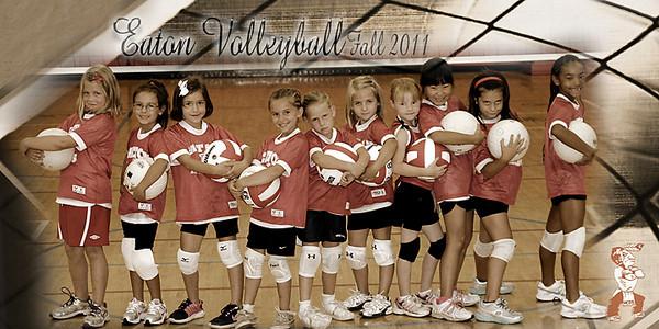 Comer Volleyball Fun Team 2011