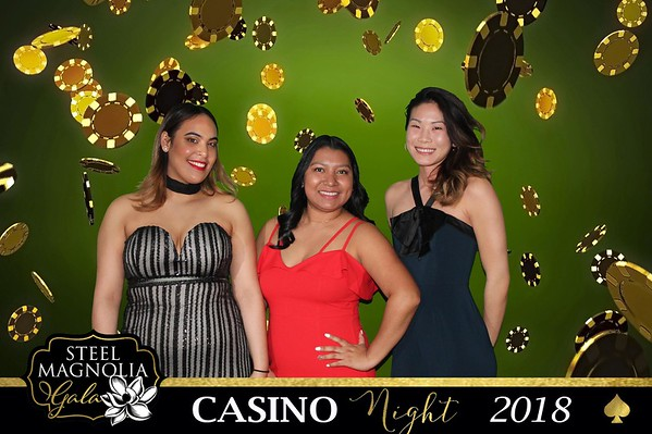 "The Steel Magnolia Gala ""Casino Night"""
