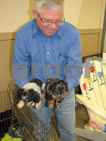 Bruce Schipull with his dachshund puppies.