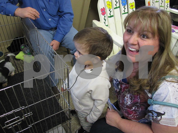 Drake Nitch with his grandma Maria Lehman admire the dachshund puppies up for auction by Corner Kennels, LLC.