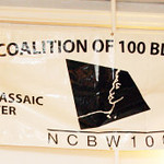 National Coalition of 100 Black People