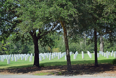 2018 Florida National Cemetery on Veterans Day (2)
