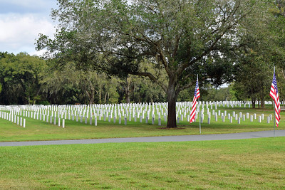 2018 Florida National Cemetery on Veterans Day (23)