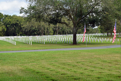 2018 Florida National Cemetery on Veterans Day (24)