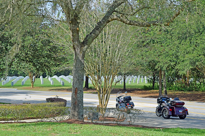 2018 Florida National Cemetery on Veterans Day (5)