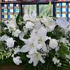 Sarah's casket flowers