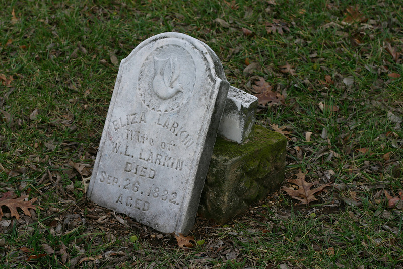 September 26, 1882<br /> Eliza Larkin was a Larkin by marriage, and lived 67 years. Her husband, William L. Larkin, lived another ten years after her death, and is buried next to her body.