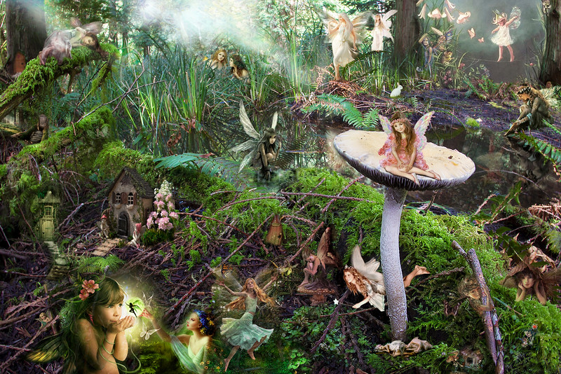 High resolution detailed world of magical forest faeries without caption