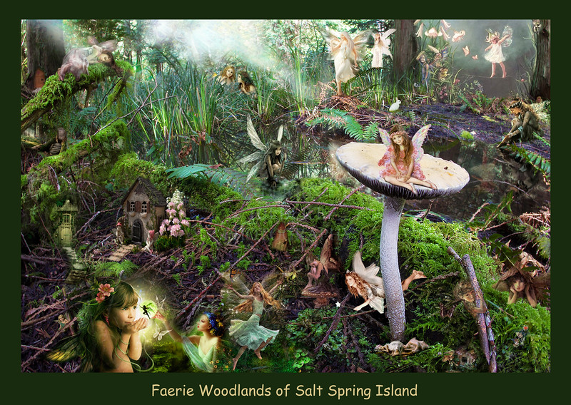 High resolution detailed world of magical forest faeries with text
