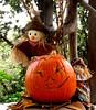 Halloween Smile For You