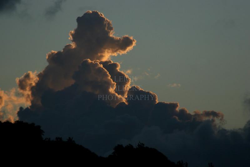Poodle Cloud