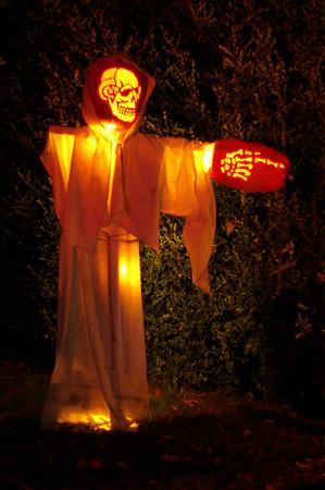 Pumpkin Blaze 2007