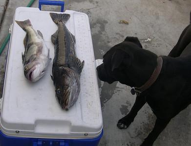 More Fun on Fishing Day