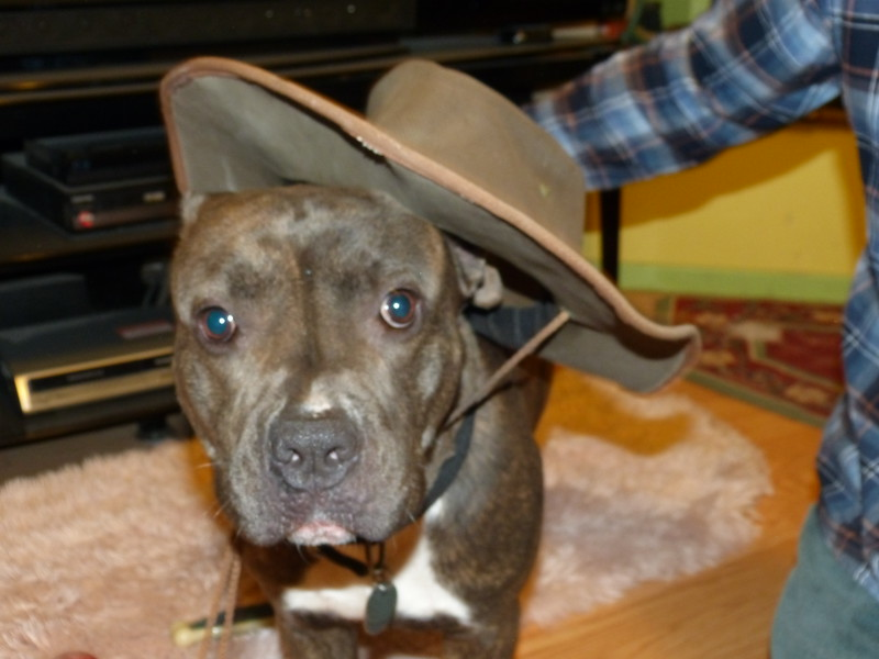 of course, she has to be subjected to posing with JC's yard hat!  Poor girl!