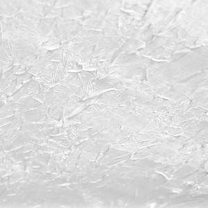 White Crushed Bichon
