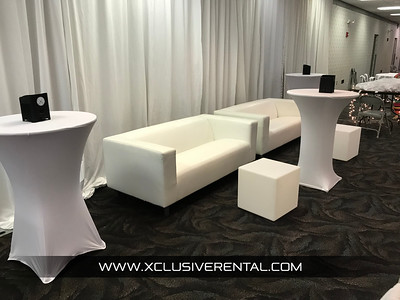 Contemporary Low back Loveseat