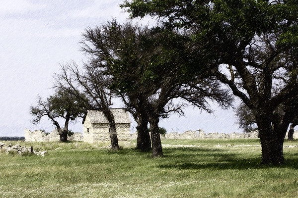 Fort_Trees