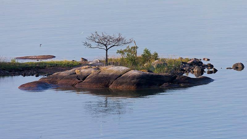 Morning in archipelago