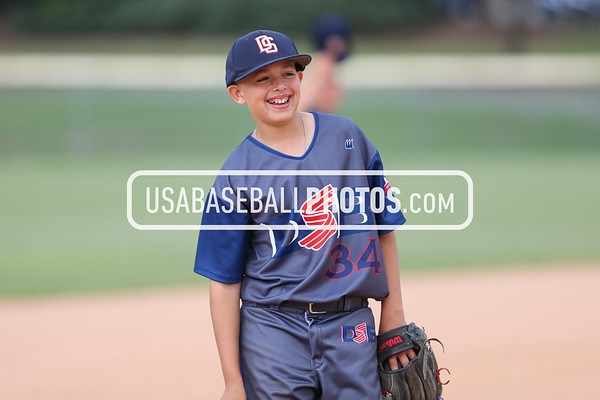 Total Baseball Dirty South Bats
