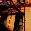 Fire Escapes in Late-Day Sun - Old Buildings and Architecture of New York City