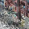 Springtime in New York 3 - New York City Street Scene