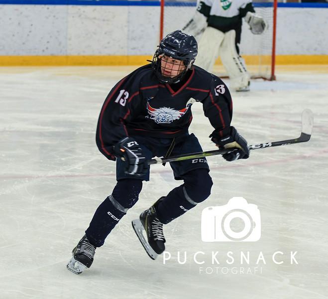 Göteborg IshockeyCup 2019