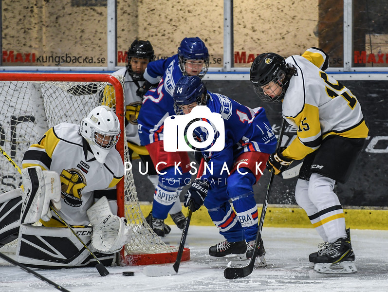 Göteborgs IshockeyCup 2019