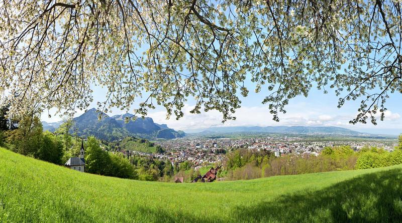 WW_Unterm Kirschbaum mit Blick auf Dornbirn 90x50_190x95