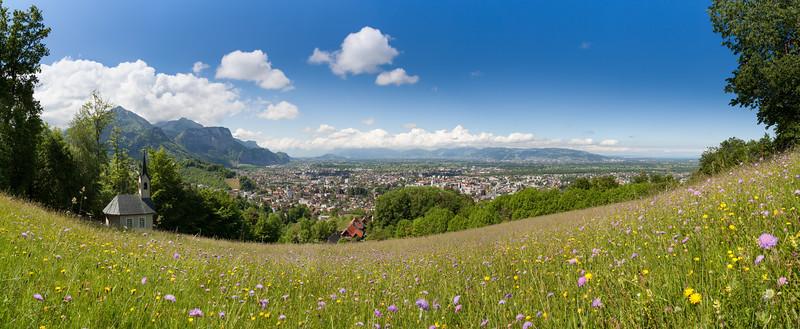 Frühlingswiese oberhalb Dornbirn
