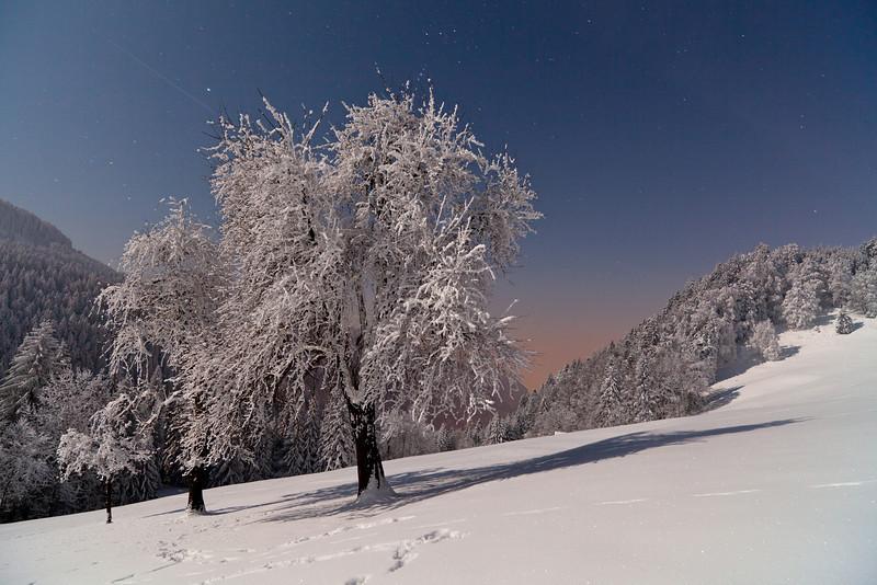 Frost über dem Rheintal oberhalb von Götzis mit Sternen