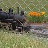 Steamer July Duty: Steamer Passes Walters Station Area July 2007