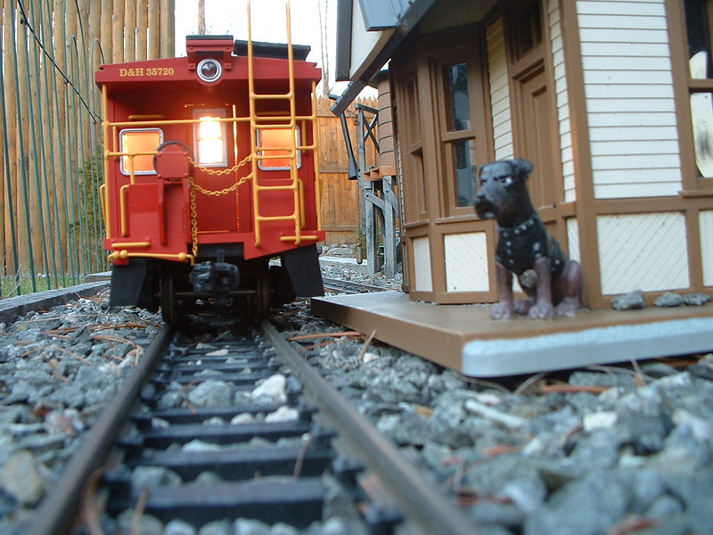 Local Departs the Station as the Dog waits for his Master to arrive on the next train.
