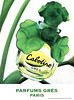 GRÈS Cabotine 1995 Spain (format Hola) 'Venta exclusiva en perfumerías especializadas y en El Corte Inglés'