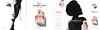 Mon GUERLAIN 2017 Russia 5-page glossy cardboard foldout with vial sample (handbag size format) 'Анджелина Джоли - Новый аромат'