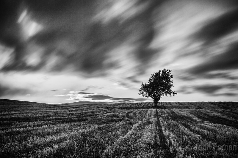 A personal take on this stunning landscape  Blasted by wind and scoured as the higher parts of Lanarkshire always are..