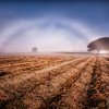 Fog bow in a field
