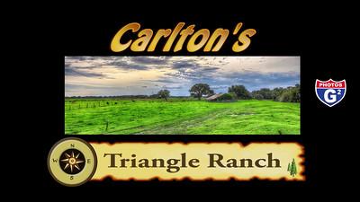 Carlton Slideshow #2