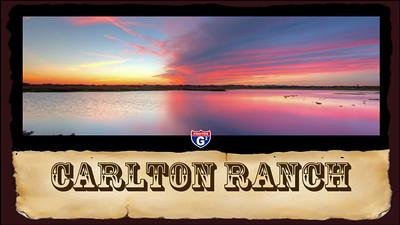 Carlton MPEG2