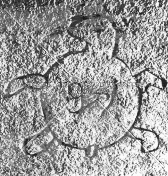 Turtle petroglyph made between 400 and 1,000 years ago recently found in the Bronx