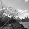 Socrates Sculpture Park, an internationally renowned outdoor museum and artist residency program.  Enlightened citizens reclaimed an abandoned riverside landfill for the public benefit.
