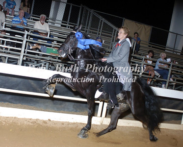 CLASS 25  FOUR YEAR OLD MARES & GELDINGS AMATEUR