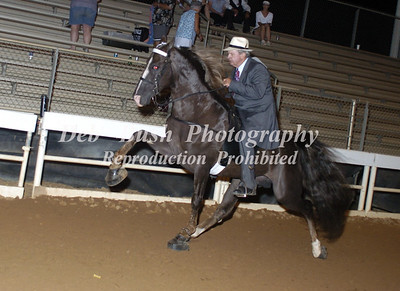 CLASS 35  WALKING HORSE STAKE